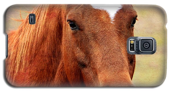 Wildfire - Equine Portrait Galaxy S5 Case