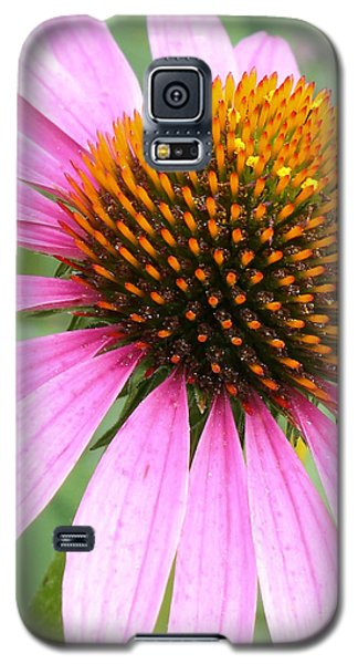 Galaxy S5 Case featuring the photograph Wildflower In Profile by Anita Oakley