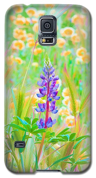 Wildflower Meadow - Spring In Central California Galaxy S5 Case