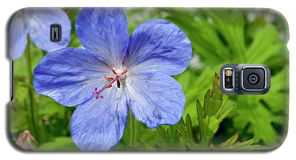 Galaxy S5 Case featuring the photograph Wildflower by Rod Wiens
