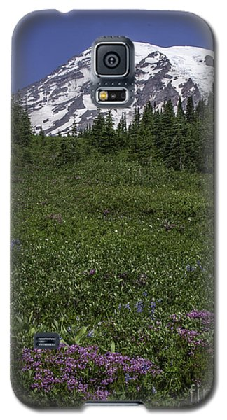 Wildflowers And Mt Rainier Summit Galaxy S5 Case