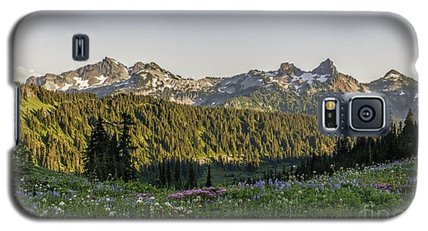 Wildflowers And The Tatoosh Range Galaxy S5 Case