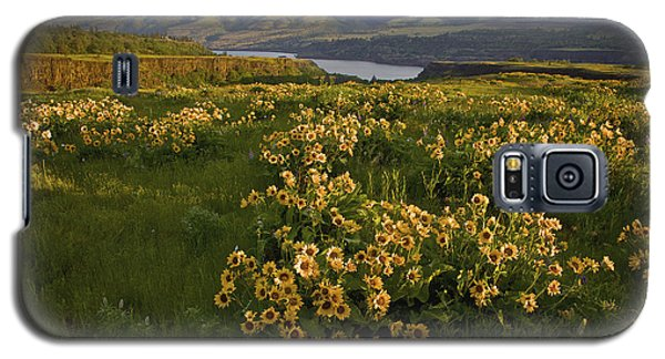 Wildflowers At Dawn On The Columbia Gorge Galaxy S5 Case