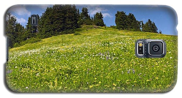 Wildflowers In North Cascades - Washington Galaxy S5 Case