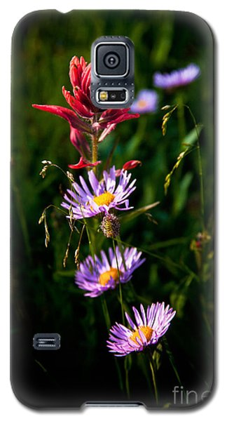 Galaxy S5 Case featuring the photograph Wildflowers by Steven Reed