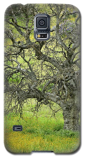 Galaxy S5 Case featuring the photograph Wildflowers Under Oak Tree - Spring In Central California by Ram Vasudev