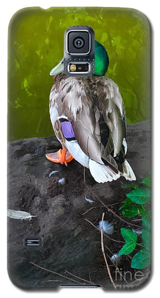 Wildlife In Central Park Galaxy S5 Case
