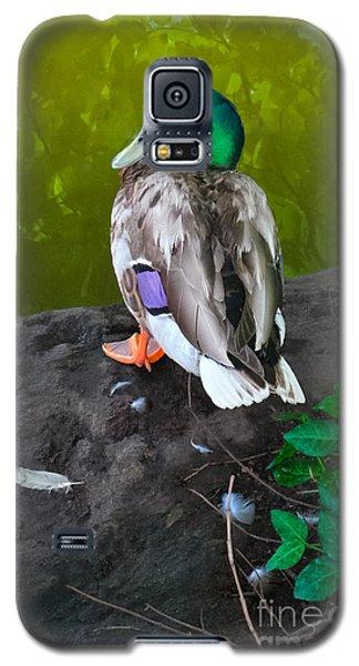 Wildlife In Central Park Galaxy S5 Case