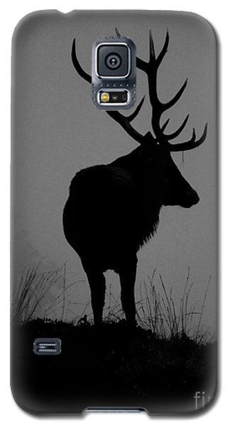 Wildlife Monarch Of The Park Galaxy S5 Case