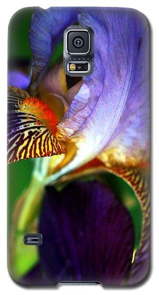Wildly Colorful Galaxy S5 Case by Deborah  Crew-Johnson