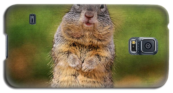 Will Work For Peanuts Galaxy S5 Case