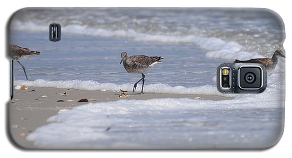 Willets On Ocracoke Galaxy S5 Case