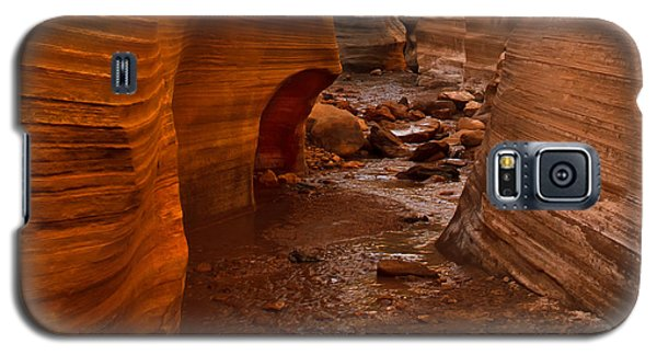 Willis Creek Slot Canyon Galaxy S5 Case
