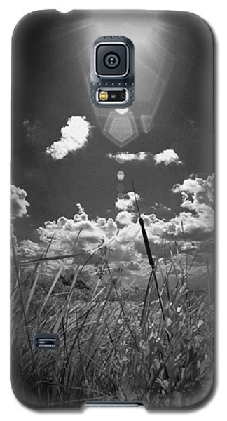 Galaxy S5 Case featuring the photograph Willow by Bradley R Youngberg
