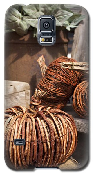 Galaxy S5 Case featuring the photograph Willow Pumpkins by Patrice Zinck