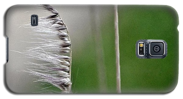 Wind Galaxy S5 Case