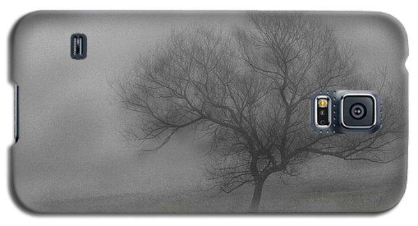 Wind Swept Tree Galaxy S5 Case