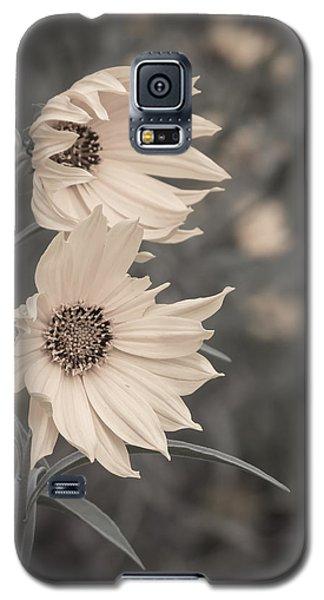Windblown Wild Sunflowers Galaxy S5 Case by Patti Deters
