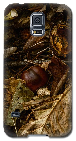 Windfall Galaxy S5 Case by Odd Jeppesen