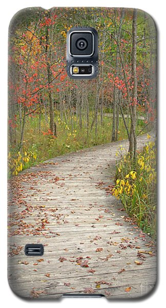 Galaxy S5 Case featuring the photograph Winding Woods Walk by Ann Horn