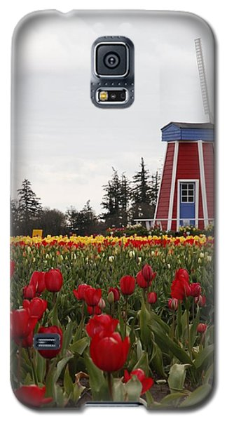 Windmill Red Tulips Galaxy S5 Case by Athena Mckinzie