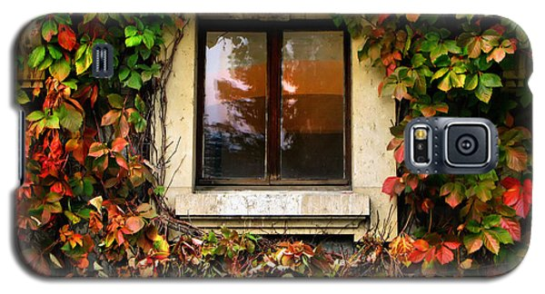 Window And Autumn Ivy Galaxy S5 Case