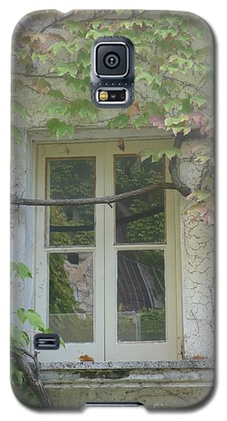 Galaxy S5 Case featuring the photograph Window And Ivy II by Nora Boghossian