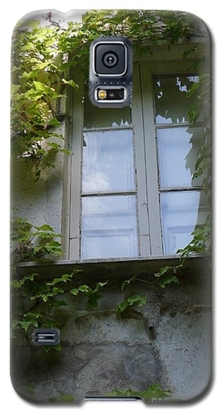 Galaxy S5 Case featuring the photograph Window And Ivy by Nora Boghossian