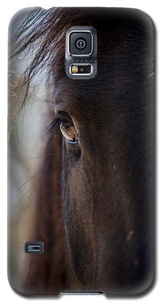 Window Into The Gentle Giant's Soul Galaxy S5 Case