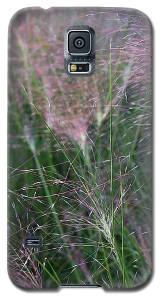 Galaxy S5 Case featuring the photograph Windsong by Geri Glavis