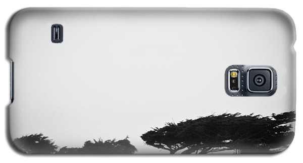 Windswept Shoreline Galaxy S5 Case