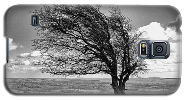 Windswept Tree On Knapp Hill Galaxy S5 Case