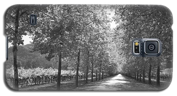 Wine Country Napa Black And White Galaxy S5 Case