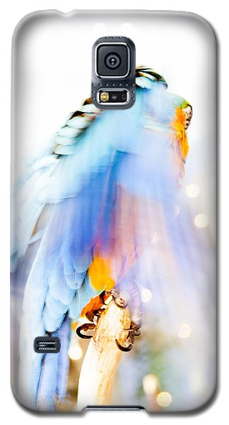 Wing Dream Galaxy S5 Case by Fran Riley