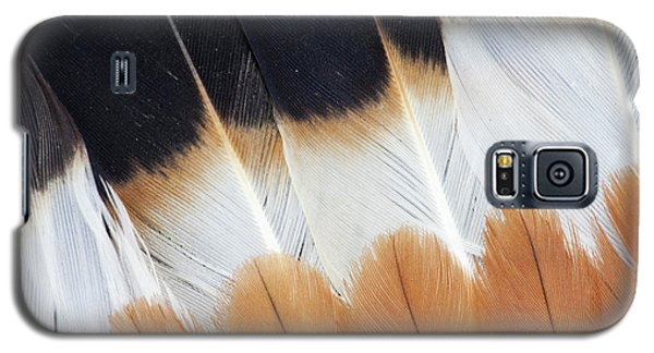 Wing Fanned Out On Northern Lapwing Galaxy S5 Case