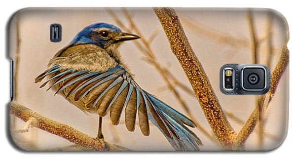 Winging It Galaxy S5 Case by Janis Knight