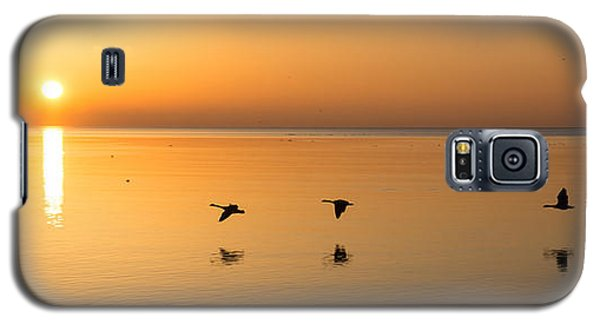 Galaxy S5 Case featuring the photograph Wings At Sunrise by Georgia Mizuleva