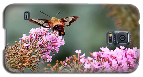 Galaxy S5 Case featuring the photograph Wings In The Flowers by Kerri Farley