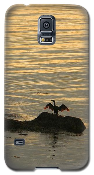 Galaxy S5 Case featuring the photograph Wings by Jean Goodwin Brooks