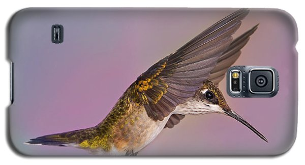 Wings Of A Hummingbird Galaxy S5 Case