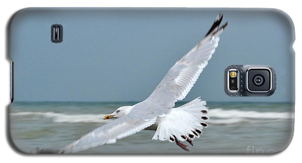 Galaxy S5 Case featuring the photograph Wings Of Freedom by Simona Ghidini