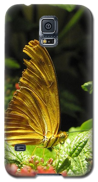 Wings Of Gold Galaxy S5 Case by Jennifer Wheatley Wolf