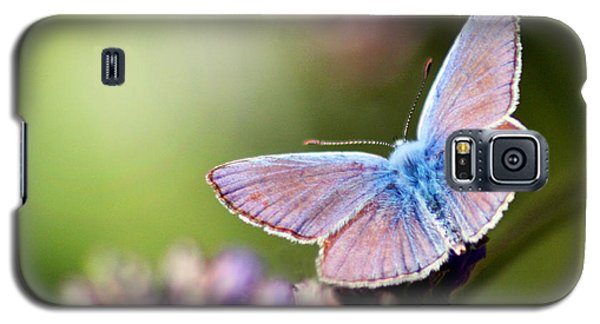 Galaxy S5 Case featuring the photograph Wings Of Tenderness by Martina  Rathgens