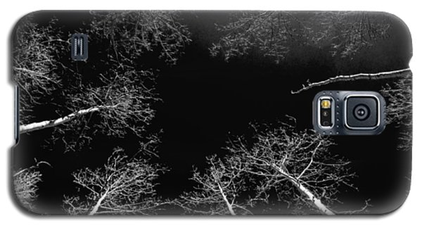 Galaxy S5 Case featuring the photograph Winter Aspen  by Eric Rundle