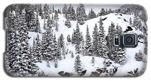 Winter At Bear Lake Galaxy S5 Case
