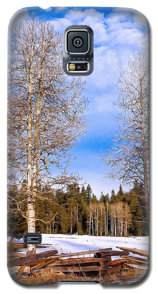 Winter Birch Galaxy S5 Case