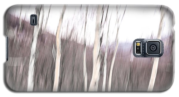 Winter Birches Tryptich 2 Galaxy S5 Case