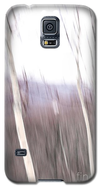 Winter Birches Tryptich 3 Galaxy S5 Case