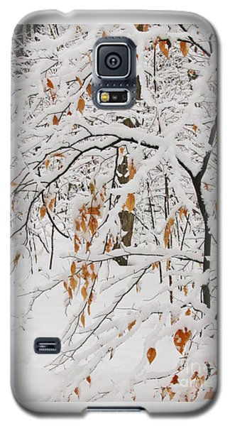 Galaxy S5 Case featuring the photograph Winter Branches by Ann Horn