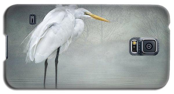 Winter Breeze Galaxy S5 Case by Brian Tarr